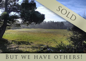 Mendocino county real estate